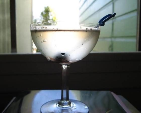 Plain Vermouth Cocktail